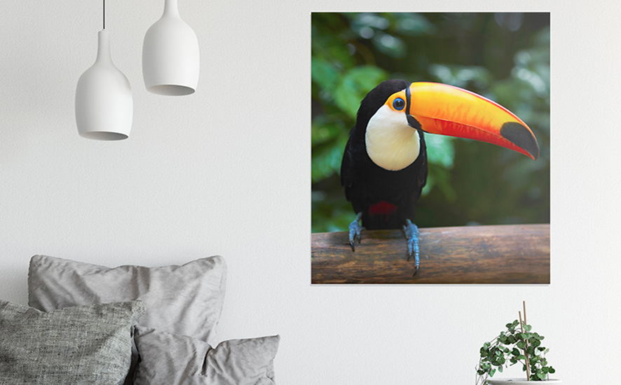 how to sell photo prints online